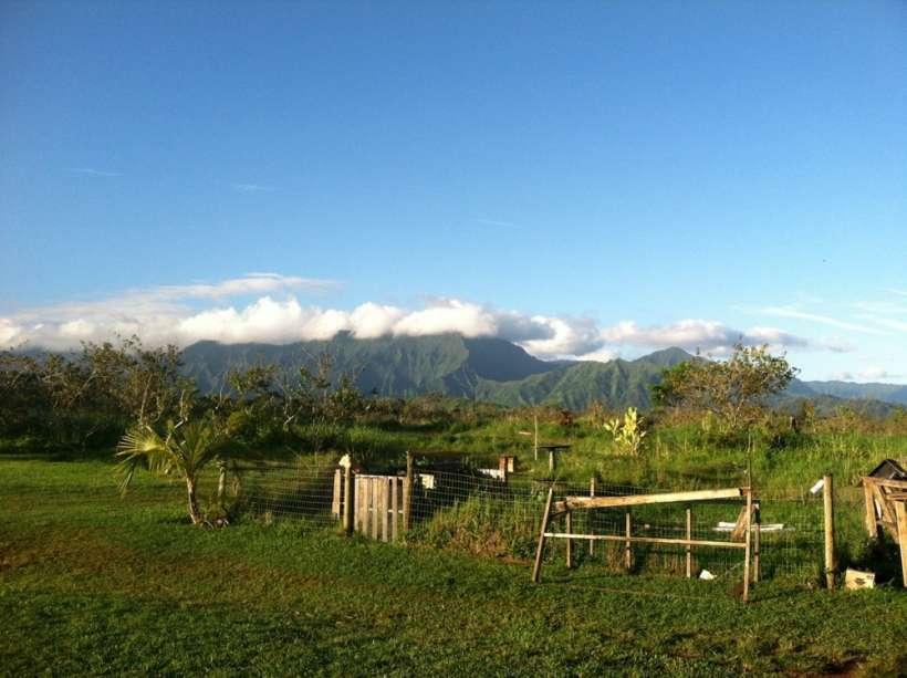 kauai mountains farm kilauea