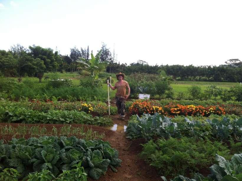 farmer garden