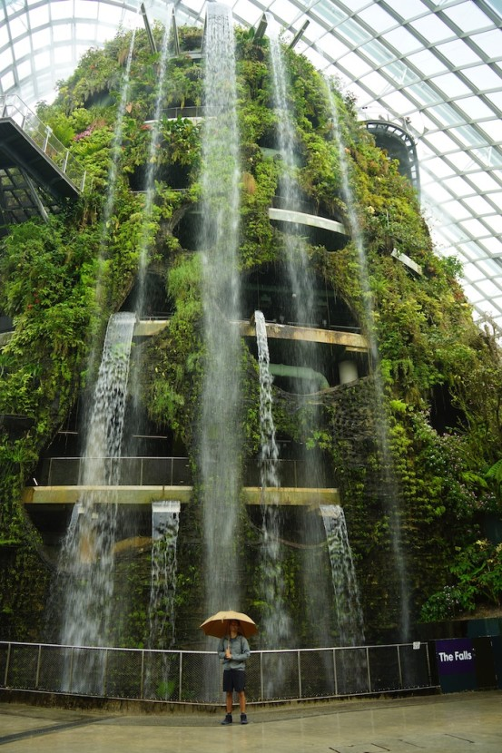 At the Cloud Forest, Gardens by the Bay