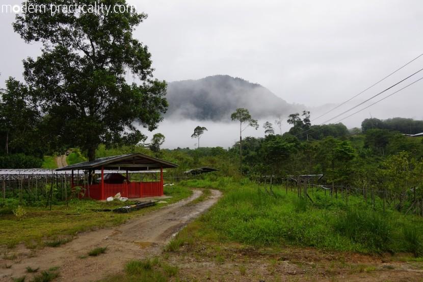 Tawau-Borneo-Malaysia-308-imp