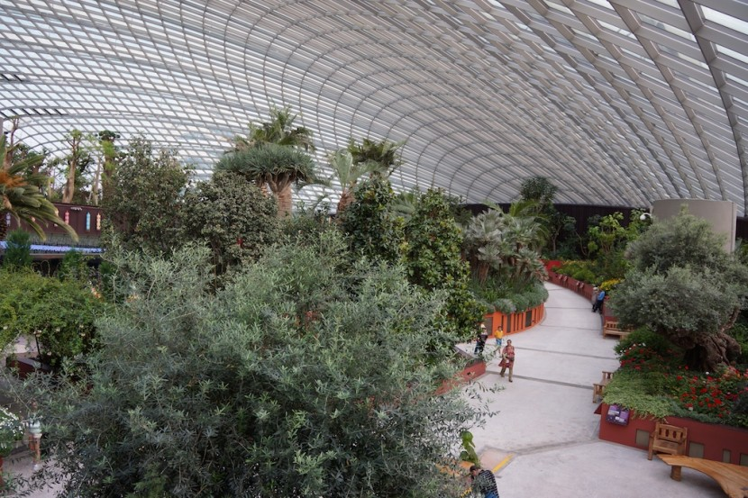 At the Flower Dome, Gardens by the Bay