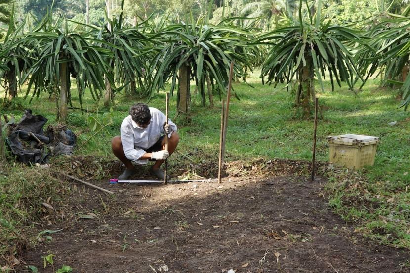 Kebun-Kaki-Bukit-Malaysia-Day 6-7 -084