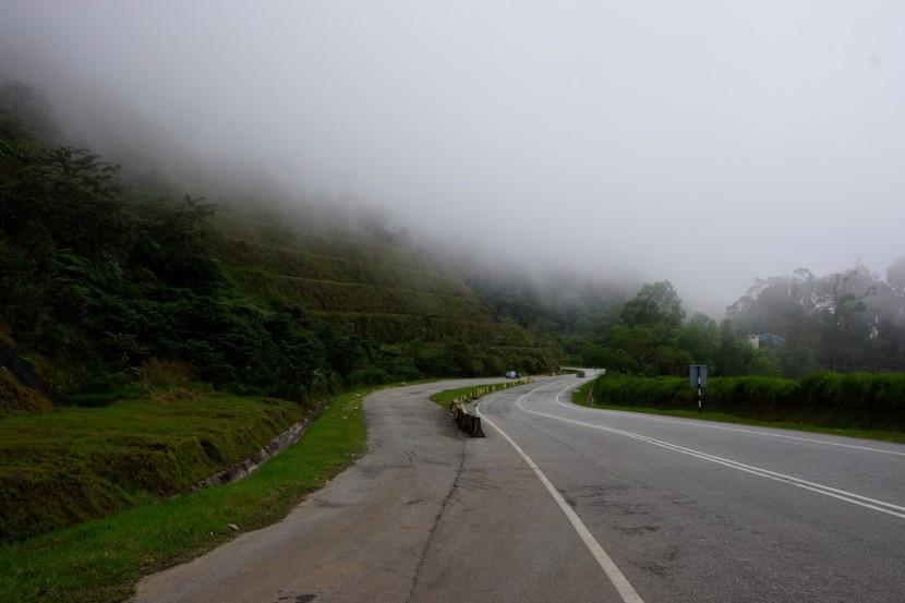 Cameron-Highlands-Tanah-Rata-Malaysia-367