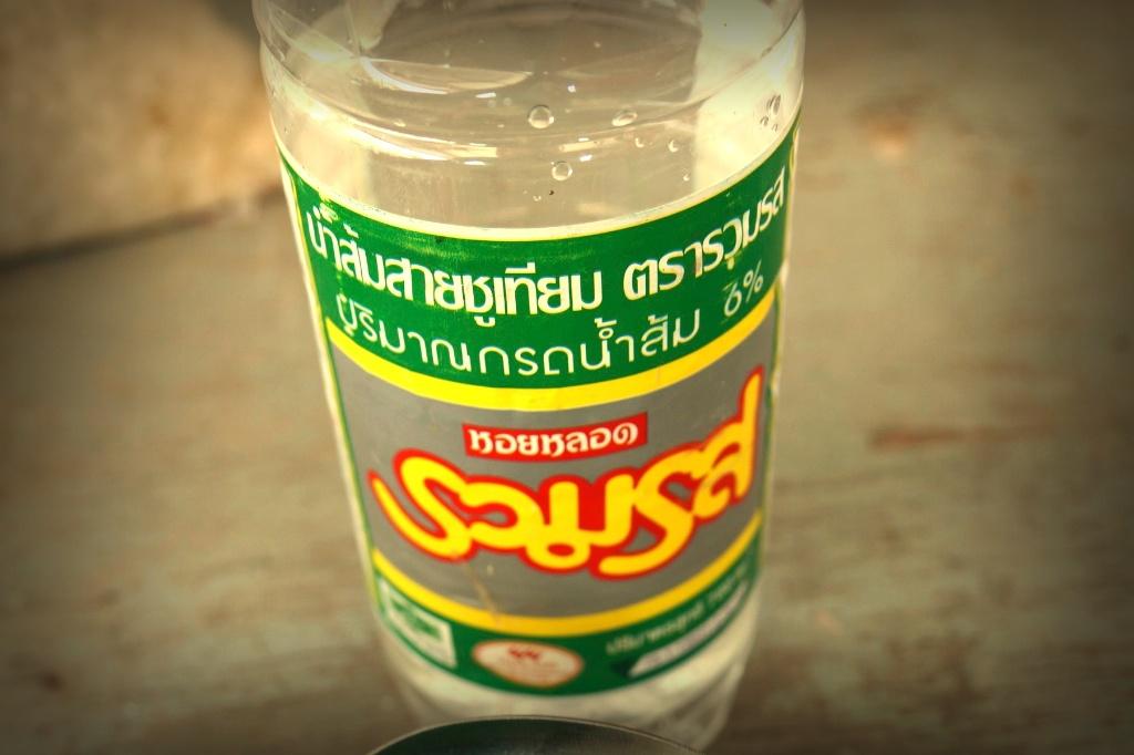 Aquaponics-Thailand-Chat-Trakan-001