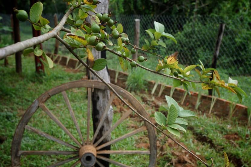 Kep-Cambodia-098